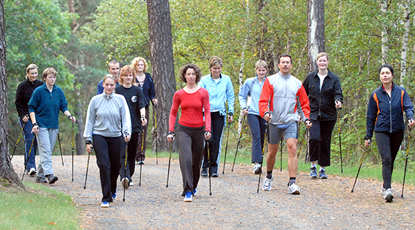 People doing Nordic walking in the woods