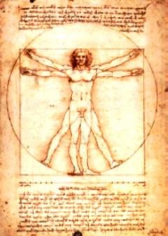Der Mensch im Mittelpunkt, mechanische Körperbelastungen (Studie von L. da Vinci)