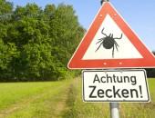 Bild eines Warnschildes vor Zecken