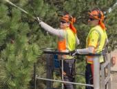 Der richtige Schutz für die Arbeit im Freien