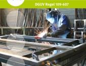 Neue Branchenregel Metallbau: Passgenauer Arbeitsschutz für ein breites Tätigkeitsspektrum