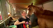 Para-Dressurreiterin Hannelore Brenner mit ihrem Pferd